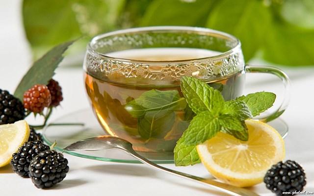 چای سبز - تفاوت چای سبز و چای سیاه چیست؟