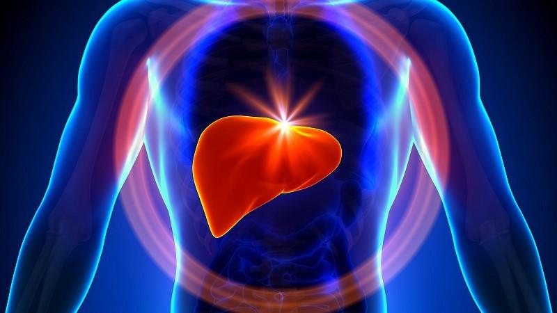 A - هپاتیت از پیشگیری تا درمان در سایت زیبان دات کام