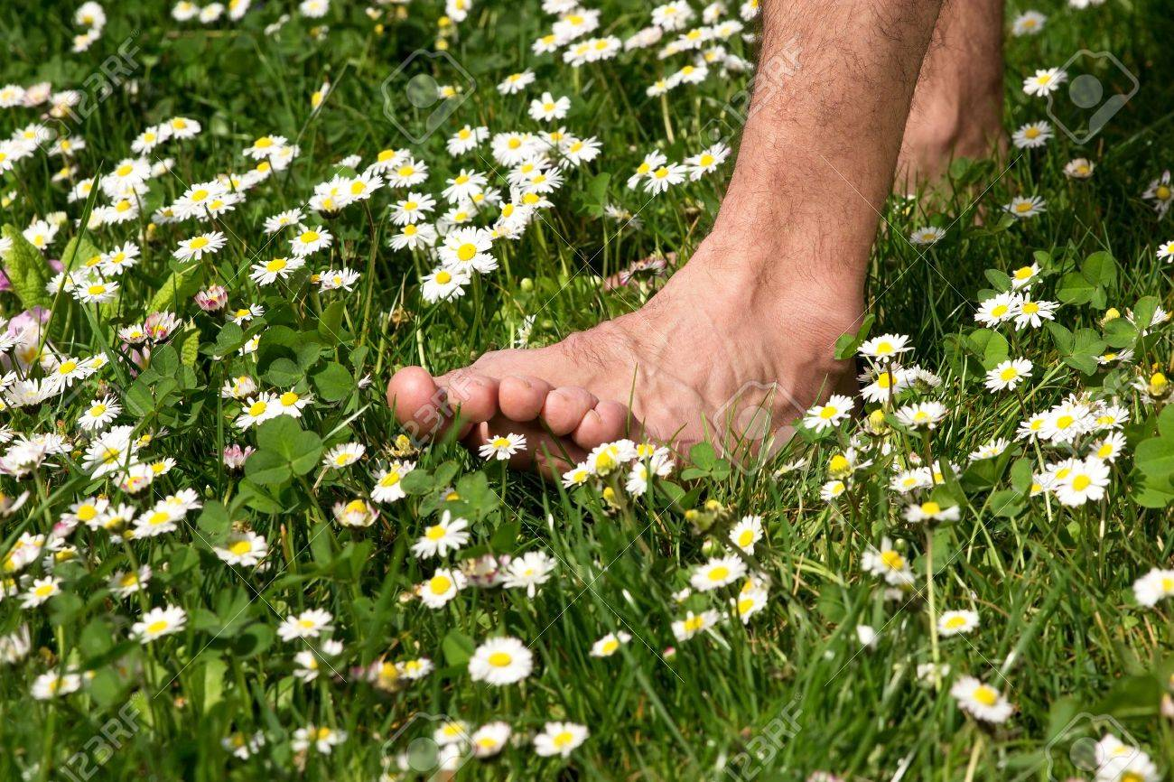 ssiimm 28078051 walking barefoot through a meadow full of flowers - راه رفتن روی چمن خوب است یا بد؟